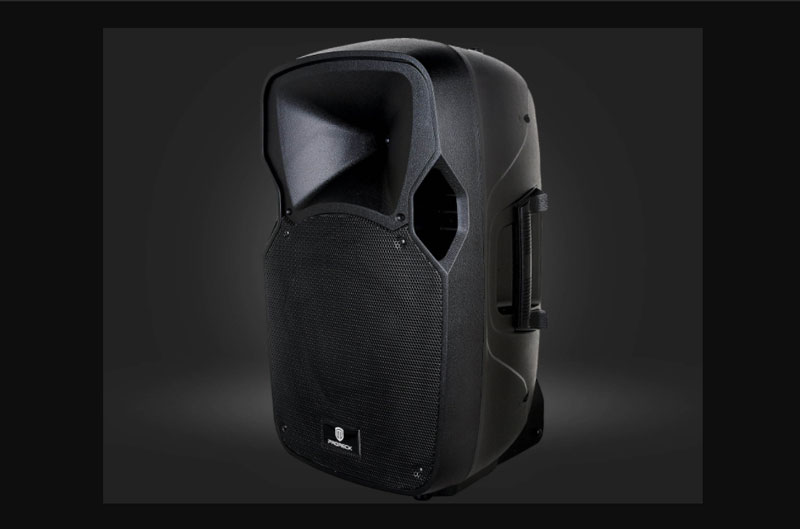 Proreck Party 12 is one of the best party speakers