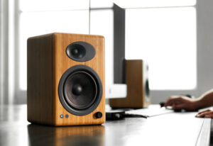 Read more about the article 10 Best Audiophile Speakers Of All Time